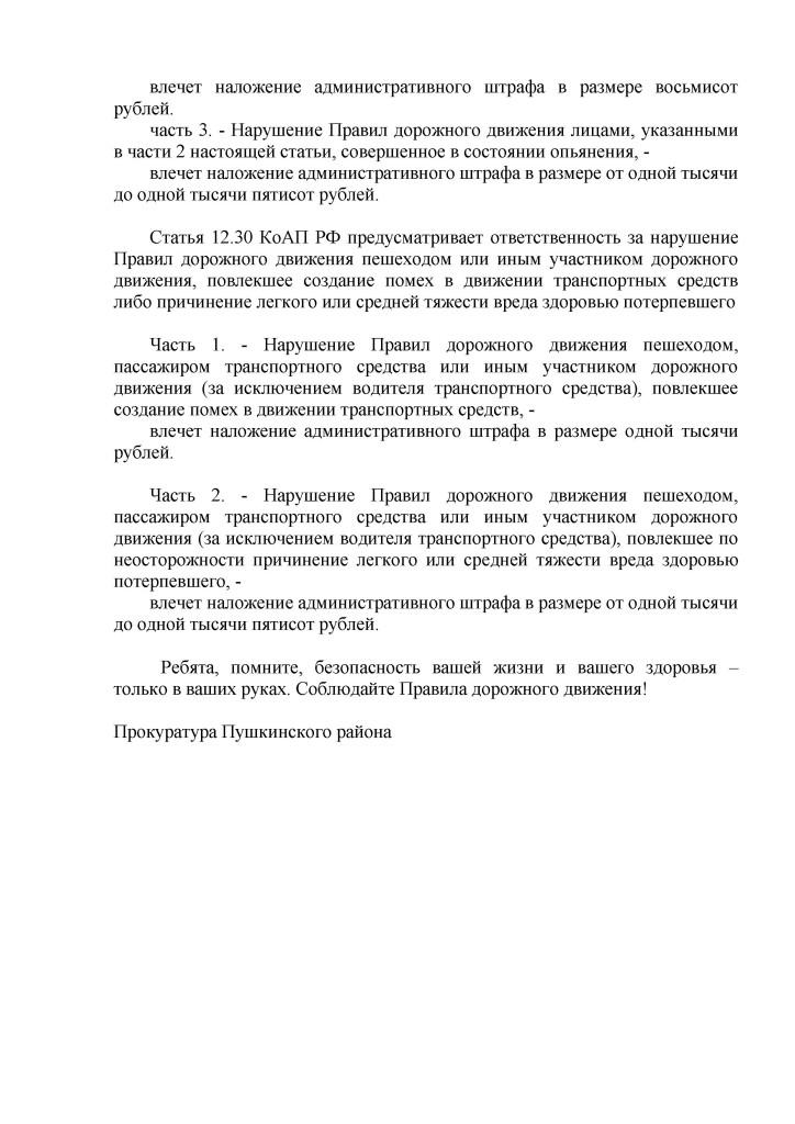 Единый день детской дорожной безопасности в Санкт-Петербурге_Страница_2